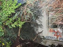 abbey_20121019_1308618061