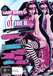 LAST DAYS OF JOE BLOW DVD RATED WEB PACKSHOT copy