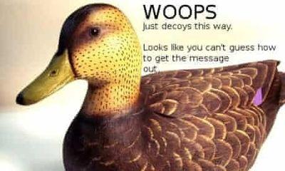 Cicada 3301 duck puzzle image